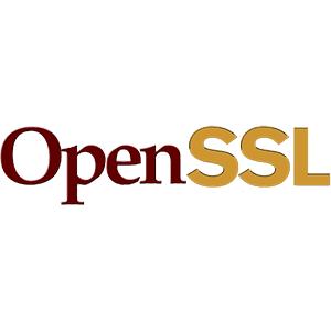 OpenSSL Heart Bleed Zafiyeti ve BugFix