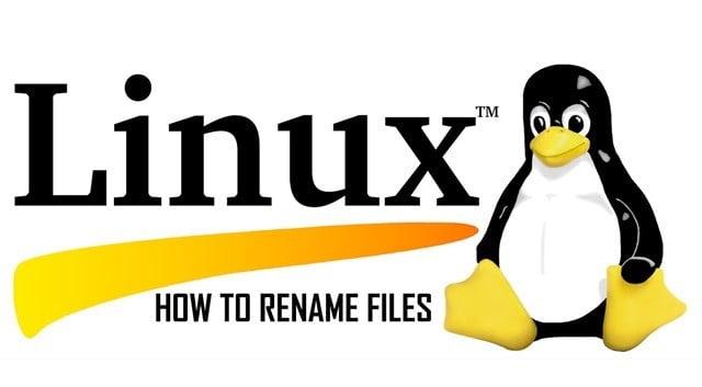 linux find komutu ile dosya ismi değiştirme